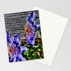 Shining at High Noon Stationery Cards