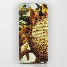 The End of the Season iPhone & iPod Skin
