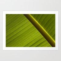 banana leaf Art Prints featuring Banana Leaf by Maria Heyens