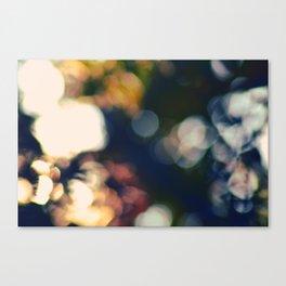 #50 Canvas Print