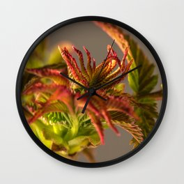Young sheets in the spring Wall Clock