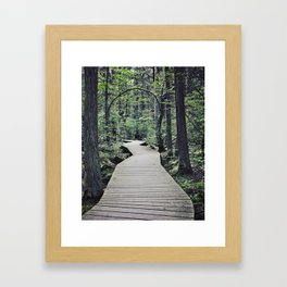 Boardwalk with natural arch Framed Art Print