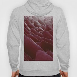 pink creature scales Hoody