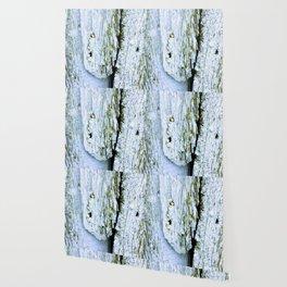 Weathered Barn Wall Wood Texture Wallpaper