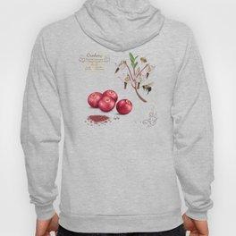 Cranberry and Pollinators Hoody