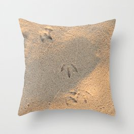 Provincetown (14 of 16) Throw Pillow