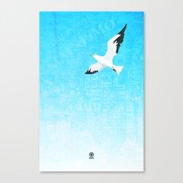 Gull (Gaviota) Canvas Print