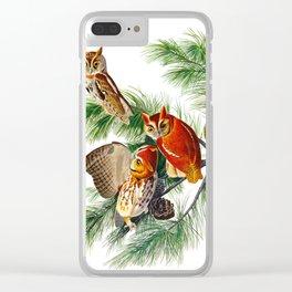 Little Screech Owl Clear iPhone Case