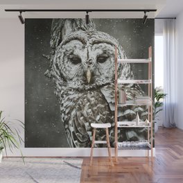 BARRED OWL  Wall Mural