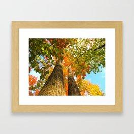 Famous fall 11 Framed Art Print