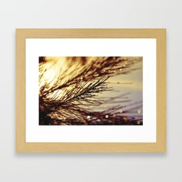 All That Glistens Framed Art Print