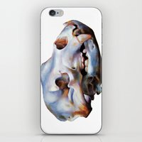 animal skull iPhone & iPod Skins featuring Animal Skull by teethbone (Tyler Snell)