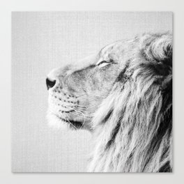 Lion Portrait - Black & White Canvas Print