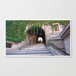 Escalinata Canvas Print