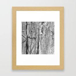 Grayscale Granite Framed Art Print