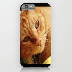 Chester iPhone 6s Slim Case