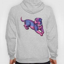 Gay Pride Pups Hoody
