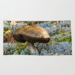 mushroom in swedish forest Beach Towel