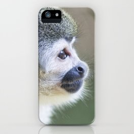 Squirrel Monkey - Animal Photography iPhone Case