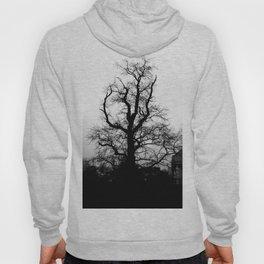 Wicked tree Hoody
