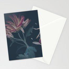 Ripe Stationery Cards