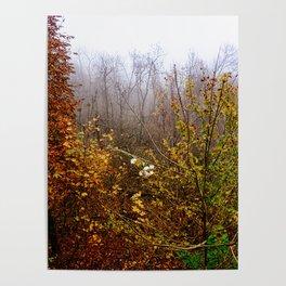 End of November  Poster