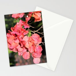 Hot Coral Floral Stationery Cards