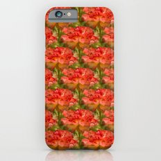 Roses Galore iPhone 6s Slim Case