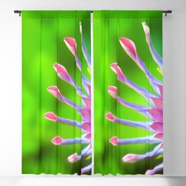 Colorful Blossom Macro Close Up Blackout Curtain