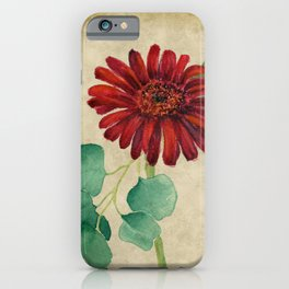 Vintage Red Daisy iPhone Case