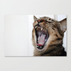 Yawning Is Contagious Canvas Print