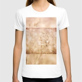 Sepia toned ripe grass inflorescence T-shirt