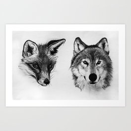 Vulpes vulpes, canis lupus Art Print