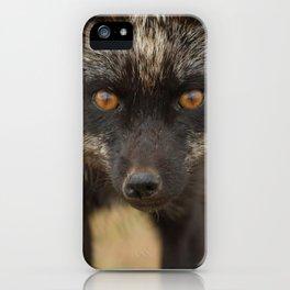 Amber Eyes iPhone Case