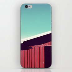 americana iPhone & iPod Skin