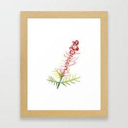Grevillea Flower Framed Art Print
