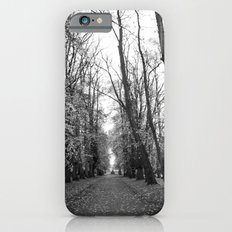 Leafy Walk iPhone 6s Slim Case