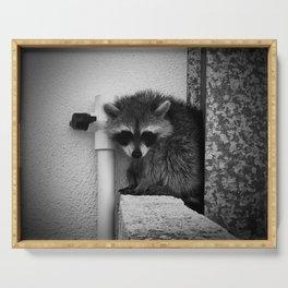 Raccoon Serving Tray