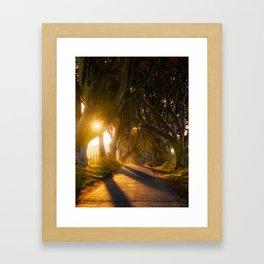 The Dark Hedges (RR192) Framed Art Print