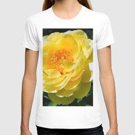Pale Yellow T-shirt