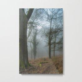 A Winters Morn Metal Print