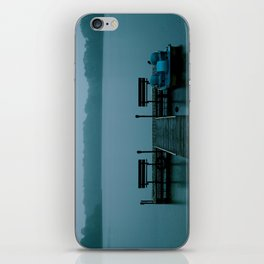 Hunky Dory Dock iPhone Skin