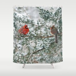 Snowy Branch Cardinals Shower Curtain