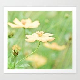 Yellow Flower I Art Print
