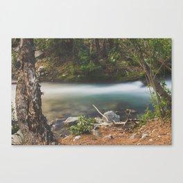 Big Pine Creek Runoff Canvas Print