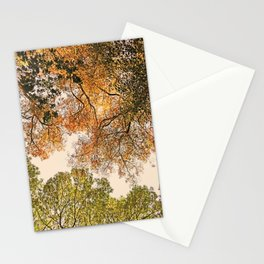 Autumn Trees high abouve Stationery Cards
