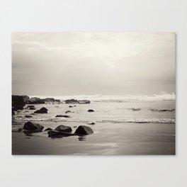 Wild Coast South Africa Canvas Print