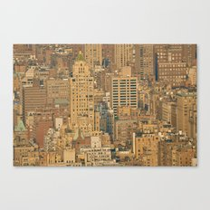 From the Rooftops of the World Canvas Print