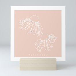 Origins of Echinacea Mini Art Print