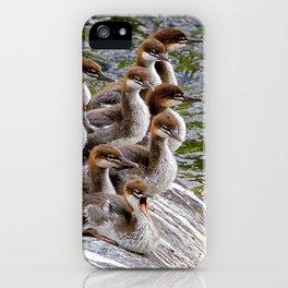 10 Little Mergansers on a Rock iPhone Case